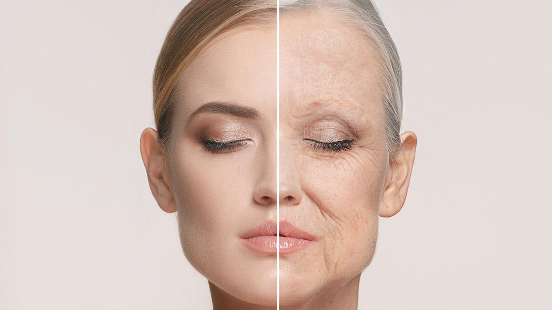 Terapia Antienvejecimiento